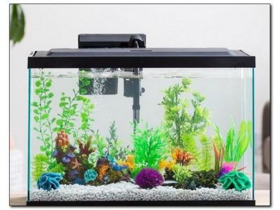 Фильтры для аквариумов: виды и выбор