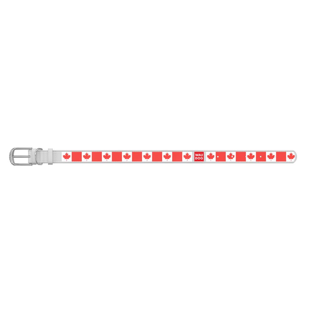 Ошейник WAUDOG Design с рисунком Кленовый лист , премиум кожа, металлическая пряжка (ширина 12 мм,, белый