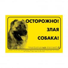 Наклейка ОСТОРОЖНО, ЗЛАЯ СОБАКА кавказ овчарка