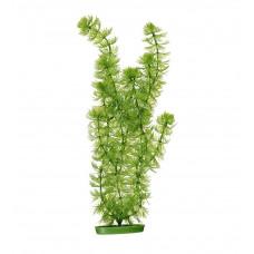 Пластиковое растение HORNWORT 30см