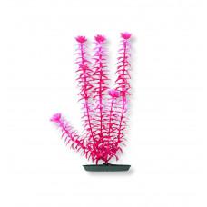 Пластиковое растение ANACHARIS pink 20см