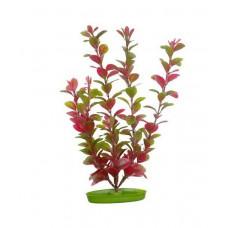 Пластиковое растение RED LUDWIGIA 38см