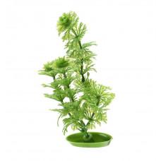 Пластиковое растение AMBULIA 13см