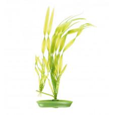 Пластиковое растение Corkscrew VALISNERIA 13см