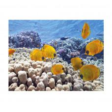 Фон для аквариума Tetra Turtle&Ree