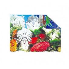 Фон для аквариума, растения и кораллы 32см, 15м