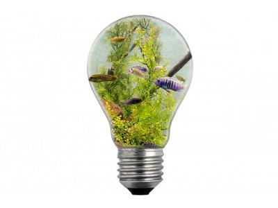Какое освещение для аквариума лучше