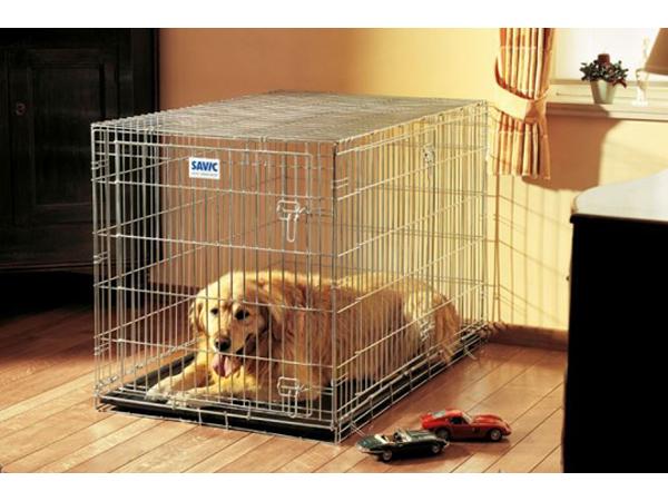 Зачем нужна в квартире клетка для собак?