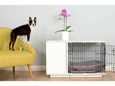Как приучить собаку к клетке в квартире