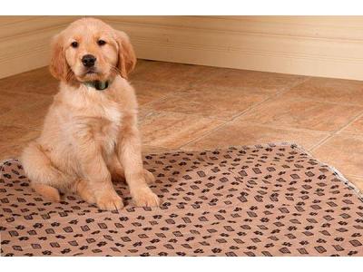 Как пошить многоразовые пеленки для собак?
