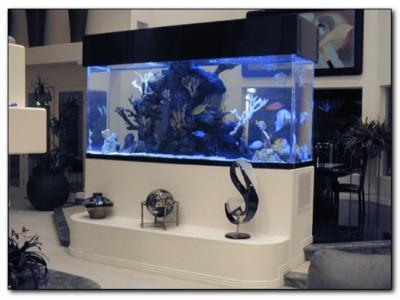 Выбираем тумбу для аквариума