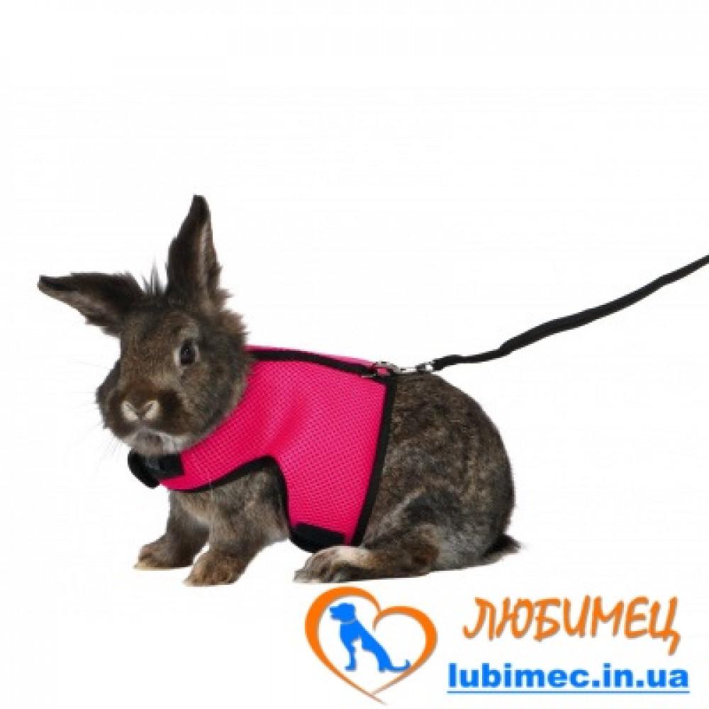 Поводок+шлея мягкая д/большого кролика