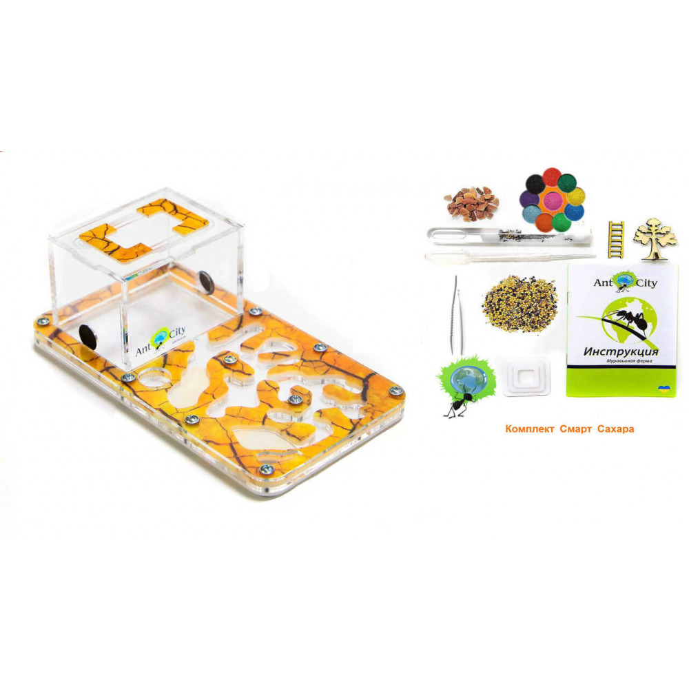 Муравьиная Ферма Ant City Smart Сахара комплект для новичка Желтый
