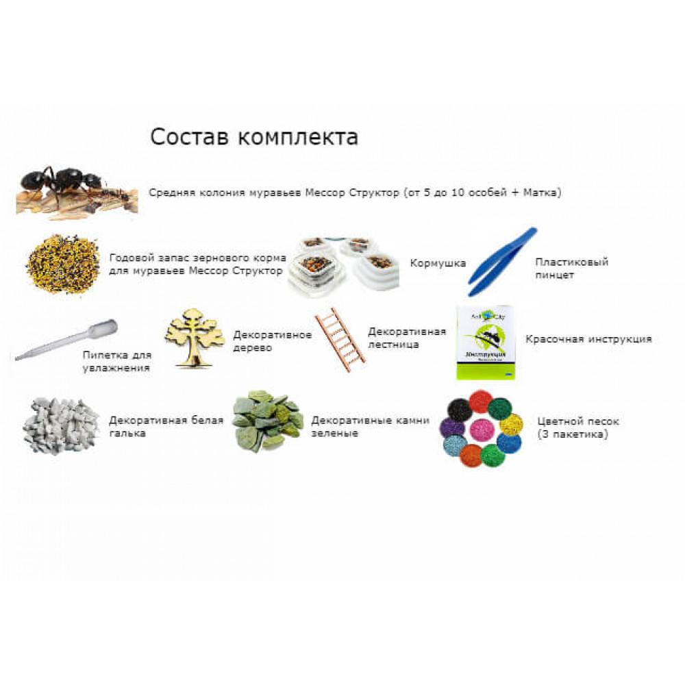 Муравьиная Ферма AntCity Стандарт Морская Волна комплект для новичка Голубой