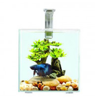 Аквариум Resun для петушка стекло 1.8 л