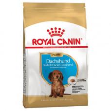 Сухой корм Royal Canin Dachshund Puppy для щенка таксы до 10 месяцев 1.5кг