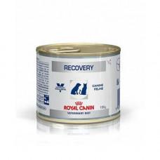 Влажный корм Royal Canin Recovery для кошек и собак в период восстановления после болезни, 195 г
