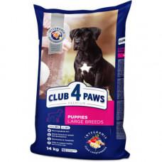 Сухой корм Клуб 4 Лапы Puppies Large Breeds Premium для щенков крупных пород, с курицей, 14кг