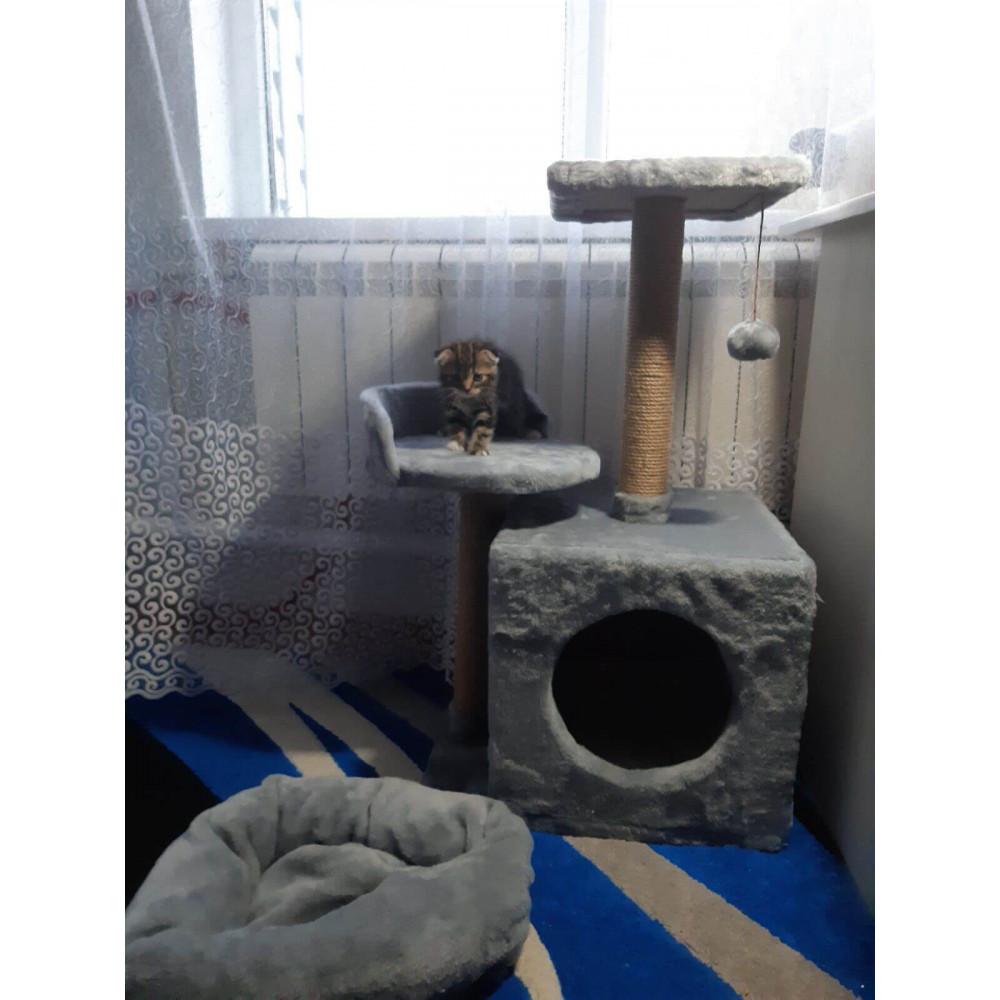 Домик-когтеточка с полкой Буся Мяус для кошки 36х46х80см Серый