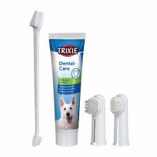 Зубная паста с щеткой д/соб.
