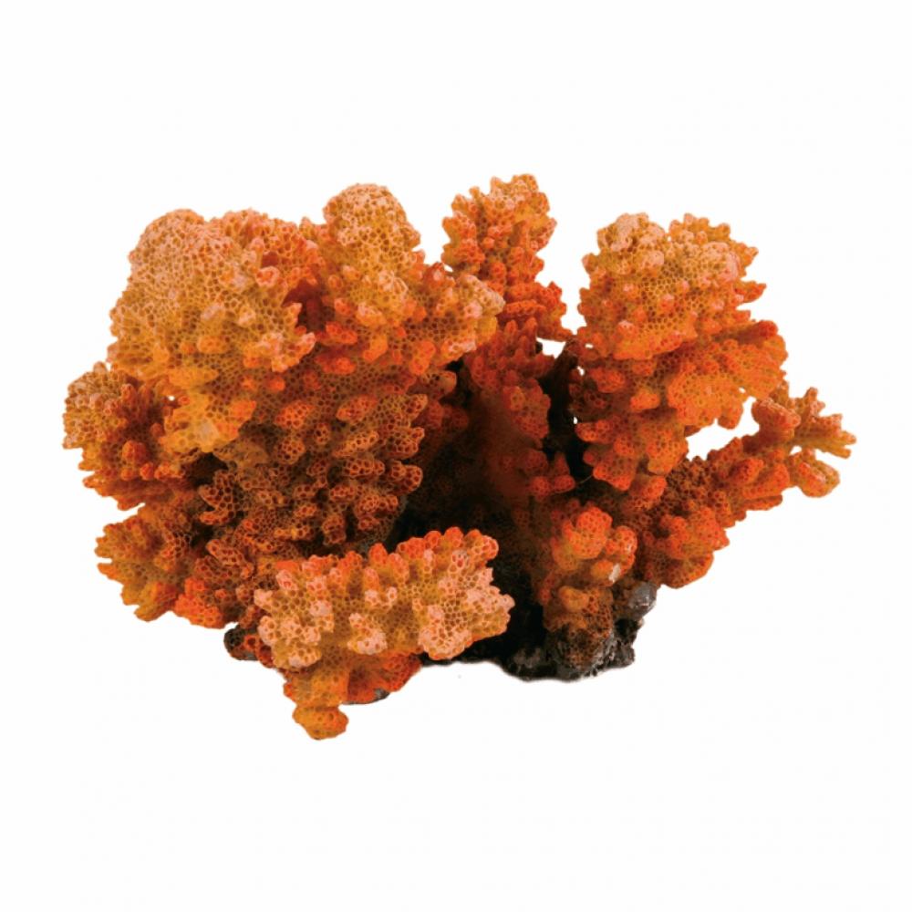 Декор. Коралл 12см.