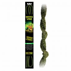 Растение Moss Vine/Лоза S