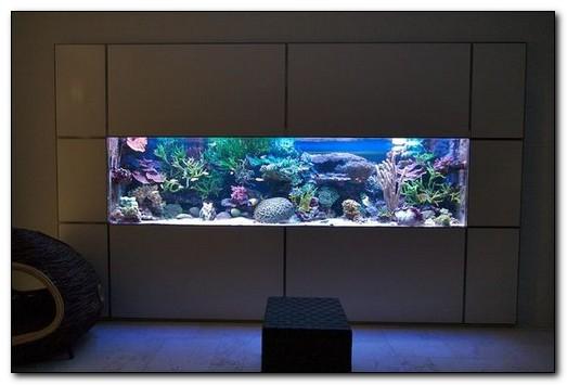 украшение интерьера - настенный аквариум