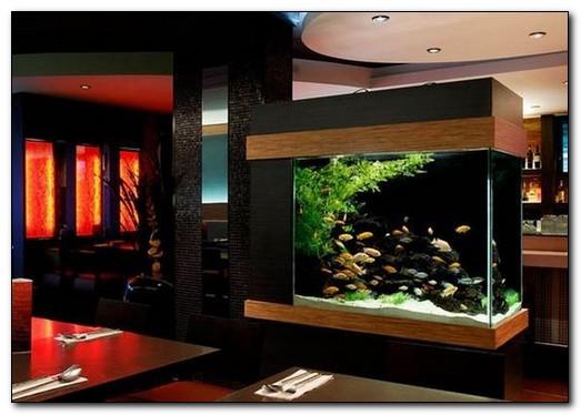 живая картина аквариум