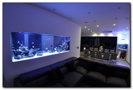 вмонтированный в стену аквариум