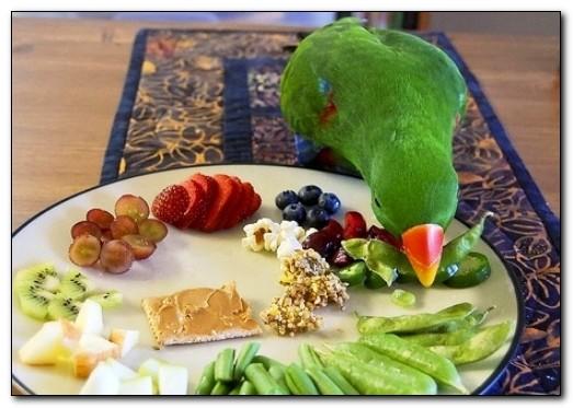 Сколько сыпать корма в кормушку попугаю?