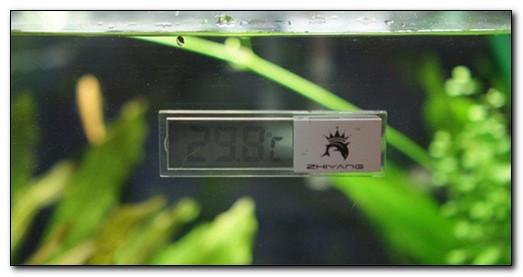 Электронные погружные lcd термометры