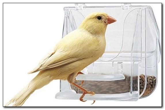 кормушка для птиц купить харьков